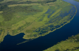 AFRICA. DEMOCRATIC REPUBLIC OF THE CONGO. THE CONGO RIVER NEAR MBANDAKA