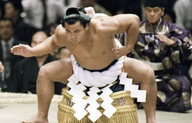 sp-sumo-a-20160801-870x700