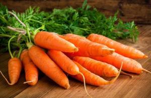 Championne-la-carotte